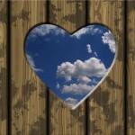 Handy-Dandy Self Love Tips Database